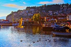 Lake Ohrid, Makedonija #lakeohrid #macedonia #makedonija #ohrid #mymacedonia #balkans #jugoslavija #yugoslavia #sharemacedonia #macedoniatimeless #swan #lake #ezero