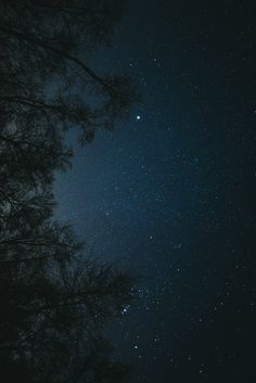Las maravillosas estrellas. Lo que llena y ocupa el Universo. Nuestros acompañantes.