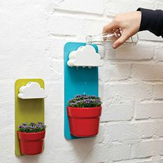 Amazon.com : Singeek(TM) Newwest Wall Mount Rainy Pot Flower Pot With Cloud-Shaped Water Filter-Indoor Hanging Flower Planter-Pouring Shower Water like Raindrops (2, Blue+Green) : Patio, Lawn & Garden