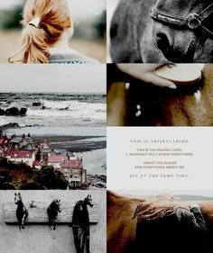 """The Scorpio Races by Maggie Stiefvater """"There are moments that you'll remember for the rest of your life and there are moments that you think you'll remember for the rest of your life, and it's not often they turn out to be the same moment. Book Aesthetic, Character Aesthetic, Maggie Stiefvater Books, Speaking Latin, The Scorpio Races, Geek Baby, Book Tv, Book Fandoms, Bibliophile"""