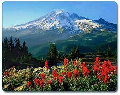 Mt. Rainier National Park -- Washington