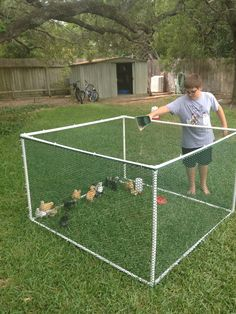Photo Only - Baby chick play yard. PVC pipe + Chicken wire + Zip ties = Happy chicks… I would add wheels and a cover Backyard Chicken Coops, Diy Chicken Coop, Backyard Farming, Chickens Backyard, Moveable Chicken Coop, Simple Chicken Coop Plans, Chicken Pen, Chicken Wire, Chicken Eggs