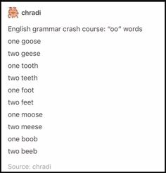 """Oo"" words to plural ""ee"" teehee! Funny Tumblr Text Posts, Tumblr Funny, Funny Posts, Funny Twitter Posts, Tumblr Love, Tumblr Stuff, Oo Words, Funny Quotes, Funny Memes"
