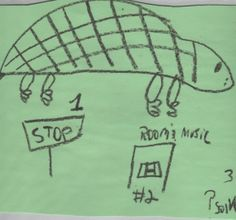 Turtle steps plan