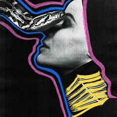 Snake by Joe Cruz