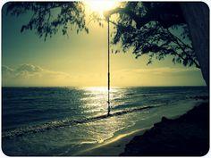 In my dreams I'm swinging here!