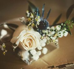 The last perfect touch ✨the grooms boutonniere! Photo by flowers by Groom Boutonniere, Showcase Design, Ottawa, Grooms, White Roses, Event Decor, Wedding Planner, Wedding Flowers, Events