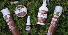 6 Yes To Coconuts Products I Can't Get Enough Of