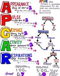 20 Best Apgar Score Images Apgar Score Virginia Apgar Digital Image
