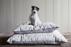 Plum & Ashby Puppy Poufs: Let Sleeping Dogs Lie: Remodelista