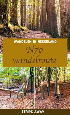 De wandelroute: wandelen in Berg en Dal - Stripe Away Walking In Sunshine, Travel Around The World, Around The Worlds, Holland, Where To Go, Us Travel, Places To See, Water Activities, Travel Destinations