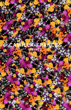 Collection | Camilla Frances Prints
