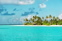 Stock image of 'Tropical white sand beach with palm trees'