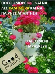 Good Night, Good Morning, Beautiful Pink Roses, Greek Quotes, Best Quotes, Diy And Crafts, Friday, Anastasia, Facebook