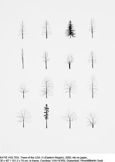 KATIE HOLTEN, Trees of the USA VI (Eastern Region), 2008, ink on paper, 101,3 x 76 cm, in frame