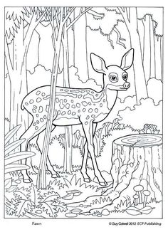 Top 25 Free Printable Zoo Coloring Pages Online Zoos