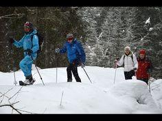 San Martino - Passo Rolle: dove sciare è un'arte al naturale