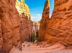 Picture of a valley in Bryce Canyon National Park, Utah