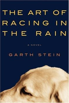 garth stein - the art of racing in the rain (thanks, @Sar). best book i've read in a long time