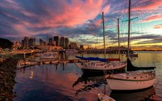 x San Diego Boats In The Port desktop PC and Mac wallpaper