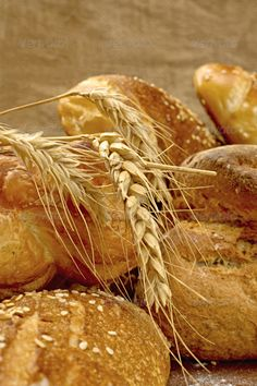 Fresh and tasty bread ...  agriculture, appetizing, baguette, bake, baker, bakery, barley, bread, breakfast, brown, cereal, corn, crunchy, crust, diet, dinner, ear, fiber, flour, food, fresh, freshness, gourmet, grain, group, loaf, meal, natural, nature, oat, organic, rye, seed, tasty, traditional, vitamin, wheat, whole, wood