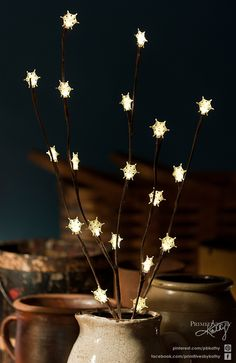 Christmas Decor. Decorative Willow Twig with lighted snowflakes.