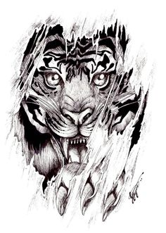dessin tatouage tigre symbole de pouvoir