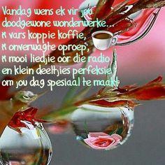 Afrikaanse Quotes, Goeie More, Christmas Bulbs, Friendship, Wisdom, Words, Mornings, Motivational, Garden