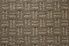 5 tips to help you stay in budget when buying new carpet, and still manage to get a good-quality carpet.: Choose a Hardy Style
