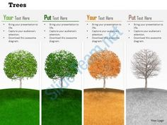 0814 trees to show four different seasons image graphics for powerpoint Slide01