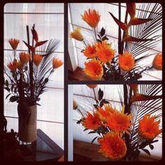 Crisantemo Araña Chrysanthemum, Table Decorations, Furniture, Home Decor, Chrysanthemums, Flowers, Decoration Home, Room Decor, Home Furnishings