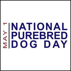 #Dog #NPDD:In #Black Dog mythology motivation changes with cultural perceptions;Where dogs are thought unclean they tend to be nefarious.