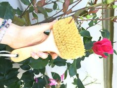 Dry Skin Brush from