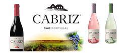 Garrafeira da Praça recebe degustação de vinhos Quinta de Cabriz
