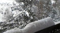 Avalanche danger forecast - level 4- high, live from Pontresina