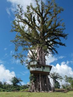 En la colinas de Silvi, Samoa, una casa ha sido construída en una localización poco habitual.