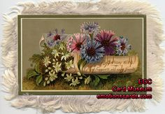 Emotions Greeting Cards - Exhibits - Greeting Card and Postcard Museum