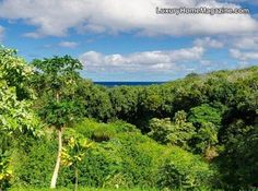 Hawai'i | Pacific Luxury Living  Rare tropical escape with expansive ocean views in Kilauea #RealEstate #Kauai #不動産 #カウアイ島