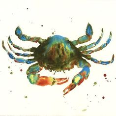 Crab Print, nautical decor, bathroom art, watercolour, gift for the fisherman £15.00