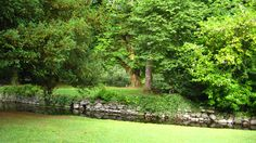 Experience the Park on Cong Abbey grounds.