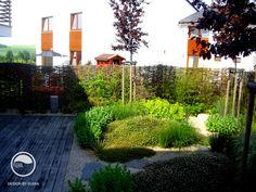#landcape #architecture #garden #path #willow