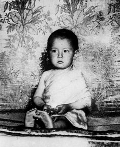 Little Dalai Lama