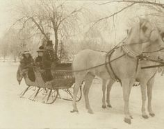 Sleigh riding in Tower Grove Park. | collections.mohistory.org