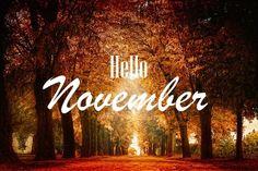 Magazino1: Καλό μήνα, Νοέμβριος