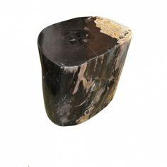 High Quality Petrified Wood | #sidetable #petrifiedwood http://andriannashamarisinc.com/product-collection/petrified-wood/