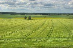 Finland, Southern Ostrobothnia (Etelä-Pohjanmaa) * http://en.wikipedia.org/wiki/Southern_Ostrobothnia ---- tässä on sitä aakeeta laakeeta silmän kantamattomiin