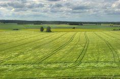 Southern Ostrobothnia (Etelä-Pohjanmaa) the flattest part of Finland Finland Summer, Native Country, Folk Style, Good Neighbor, Marimekko, Shades Of Green, East Coast, Norway, Places To See