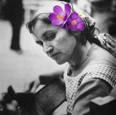 """""""As veias abertas da América Latina"""" - Violeta Parra - Flores no cabelo - Colagens inspiradas na cultura e no povo latino-americano. Nome do projeto retirado do livro """"As veias abertas da América Latina"""" de Eduardo Galeano."""