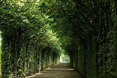 ღღ beautiful!! Bayreuth, Laubengang - barocke Gartenanlage - #germany #franken #bayreuth