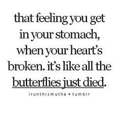 butterflies just died